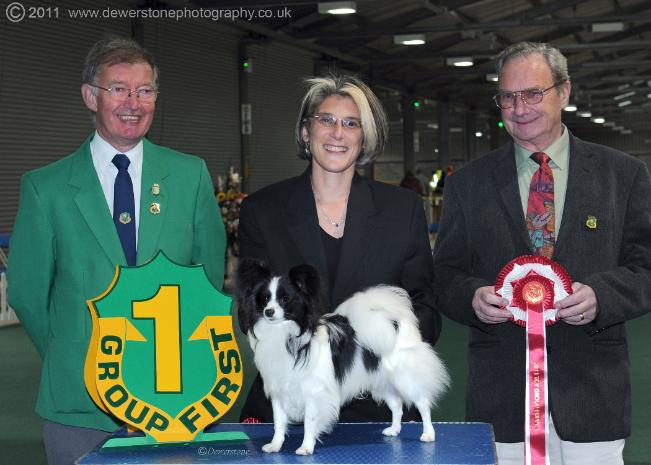 Ch Spinillons Rebel Rowser JW SH CM Toy Puppy Group 1 SWKA 2011